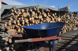 Traditional Firewood to Heat our Homes