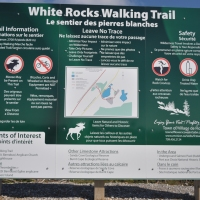 White Rocks Walking Trail - Flower's Cove, NL