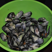 Take a Walk on the Wild Side - Wild Mussels from the Strait of Belle Isle