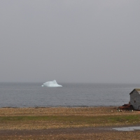 A Small Iceberg in Green Island Brook
